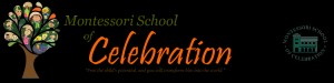 Montessori School of Celebration